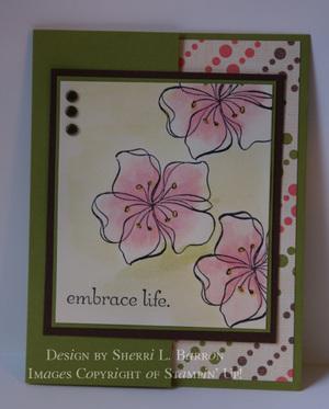 Embrace_life_5